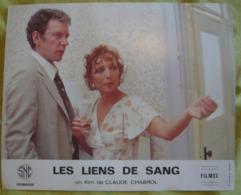 15 Photos Du Film Les Liens De Sang (1978) - Albums & Collections