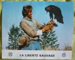 11 Photos Du Film La Liberté Sauvage (1975) - Albums & Collections