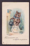 CPA WAIN Louis  Chat Cat Position Humaine Humanisé Circulé - Katten