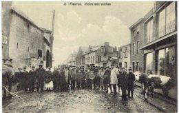 2   FLEURUS - Foire Aux Vaches - Fleurus