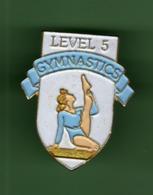 GYMNASTICS *** LEVEL 5 ***  2009 (8) - Gymnastiek