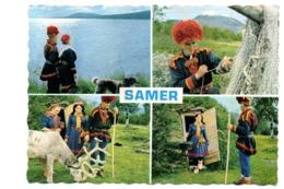 Lapp Samer - Norvegia