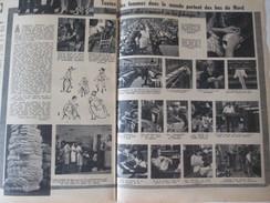 1949 Les Femmes Portent Les Bas Du Nord  Fourmies  ? Usine De Bas - Zonder Classificatie