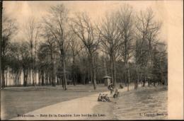Bruxelles : Bois De La Cambre : Bords Du Lac - Bosques, Parques, Jardines