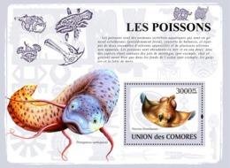 COMORES 2009 - Fishes. YT 159, Mi 2113/BL473, Sc 1082 - Isole Comore (1975-...)
