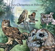 COMORES 2011 - Owls I. YT 313, Mi 3042/BL629 - Komoren (1975-...)