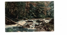 OWEN SOUND, Ontario, Canada, Sydenham River, Pre-1920 Postcard, Grey County - Ontario