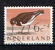 PAYS-BAS /Oblitérés/Used/ 1961 - Oiseau / Huitrier Pie - Period 1949-1980 (Juliana)