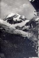 Courmayeur - Ghiacciaio De Le Lex Blanche E Aig De Trelatete Dal Rifugio Elisabetta - Formato Grande Viaggiata – E 14 - Aosta