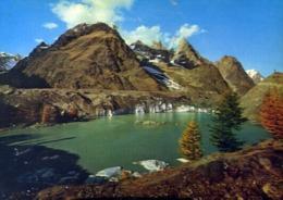 Courmayeur - Lago E Ghiacciaio Del Miage - Formato Grande Non Viaggiata – E 14 - Aosta