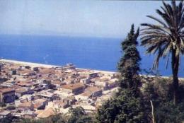 Nicotera - Catanzaro - Panorama - Formato Grande Viaggiata – E 14 - Catanzaro