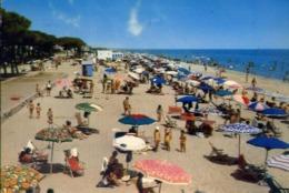 Pineto - Teramo - Spiaggia - Formato Grande Viaggiata – E 14 - Teramo