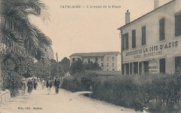 I170 - 83 - CAVALAIRE - Var - L'avenue De La Plage - Epicerie De La Côte D'Azur - Cavalaire-sur-Mer