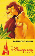 FRANCE 1995     Disneyland    Passeport Adulte Valide Du 24.06.95 Au 25.06.95 - Toegangsticket Disney