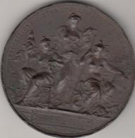 Trieste 1882 - Esposizione Austro Ungarica Industriale Agricola - Medaglia In Bronzo Colpi Ai Bordi - Other