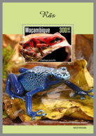 MOZAMBIQUE 2019 MNH Frogs Frösche Grenouilles S/S - IMPERFORATED - DH1945 - Frogs