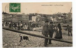 66 - Banyuls -sur-mer - Coin  De La Plage - Banyuls Sur Mer