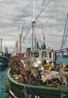 29 - LE GUILVINEC - Chalutiers Dans Le Port - Guilvinec