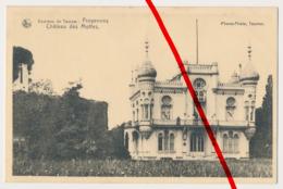 Froyennes - Chateau Des Mottes - 1916 - Tournai