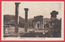 CPA-DJEMILA-Forum Sud - Arc De Caracalla - Phototypie Albert, Alger N°1* SUP ** 2 SCANS - Algeria