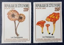 IVORY COAST 2005 YT 1241 /2 MICHEL Mi 1475 /6 IMPERF ND MUSHROOMS MUSHROOM CHAMPIGNON CHAMPIGNONS FUNGI PILZE - RARE MNH - Costa D'Avorio (1960-...)