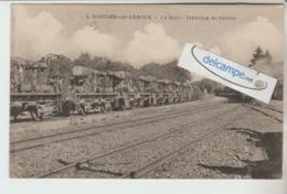 SAINT-DIDIER-sur-ARROUX : La Gare,Train,Wagons,Direction De Nevers. - Francia