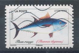 1683 (o) Poisson - Thon Rouge - France