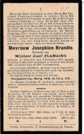 Hoeleden, Oplinter, 1943, Josephien Brandts, Flaming - Devotieprenten