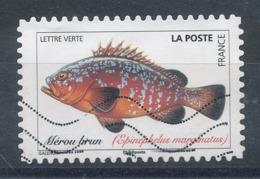 1691 (o) Poisson - Mérou Brun - France