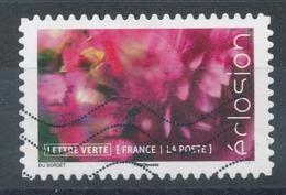 1709 (o) Eclosion De Fleurs - France