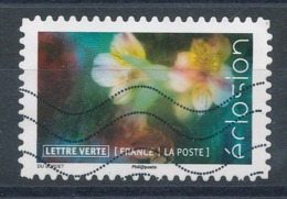 1715 (o) Eclosion De Fleurs - France