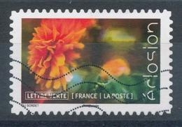 1712 (o) Eclosion De Fleurs - France