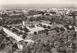 85 - L' ILE D' YEU - Le Fort De Pierre Levée - Ile D'Yeu