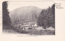 Gruss Aus Engenthal Wangenbourg - Vue Sur Schleifmühle Et Forsthaus Rosskopf:  Maison Forestiere - Onf - Eaux Et Forêts - France