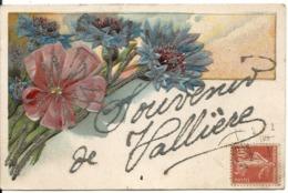 VALLIERE. SOUVENIR DE... CARTE GAUFFREE - France