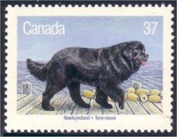 Canada Chien Terre-neuve Newfoundland Dog MNH ** Neuf SC (C12-20d) - Hunde