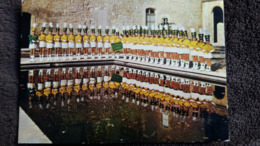 CPSM MAJORETTES LES JONQUILLES DE JONQUIERES VAUCLUSE PHOTO BERNATEAU - Musique Et Musiciens