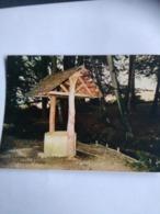 Foret  De  Berce    Source De L Hermitiere - France