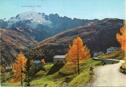 Sondrio - Alta Valtellina - Arnoga - Fg Vg - Sondrio