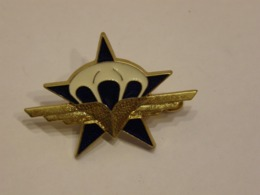 FRANCE MILITARY SIGN COMMANDO ENAMEL BADGE 121 - Militaria