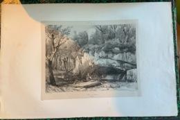 Lithographies Sur L'Auvergne (une Cinquantaine) - Lithografieën