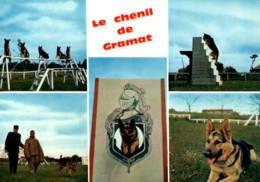 CPM - GENDARMERIE NATIONALE - LE CHENIL De GRAMAT - Dressage Des CHIENS  ... - Police - Gendarmerie