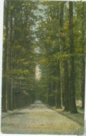Velp; Roozendaalsche Laan - Niet Gelopen. (H.W.K.) - Velp / Rozendaal