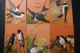 Lot 6 Cartes Gaufrées HIRONDELLES / 6 Reliefkaarten Met Zwaluwen - Oiseaux