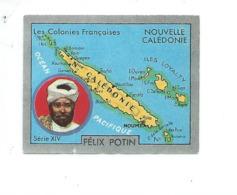 Chromo NOUVELLE CALEDONIE Océanie Felix Potin Ma Collection 1930s TB 52 X 40 Mm Colonies Françaises RARE 2 Scans - Félix Potin