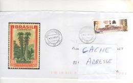 Beau Timbre , Stamp   Sur Lettre , Enveloppe , Cover , Mail Du 01/04/1999 Pour La France - Brazilië