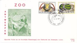 België - FDC 349 - 11 December 1971 - Solidariteit - Insecten - Runderdaas/Gallische Wesp - OBP 1611-1612 - FDC