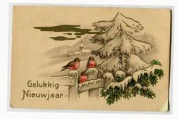 Pays-Bas Hollande Bonne Année Noël Oiseaux Bullfinches Religion Eglise 1940 Gaufrage - Unclassified
