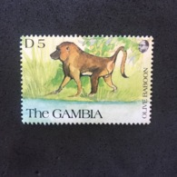 GAMBIA. BABOON. MNH. 5R1401B - Chimpanzees