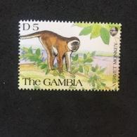 GAMBIA. MONKEY. MNH. 5R1401C - Chimpancés